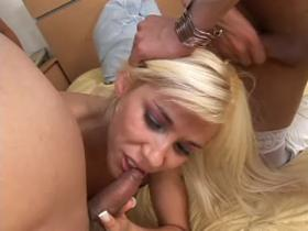 Four beautiful shemales and busty gal in stormy orgy